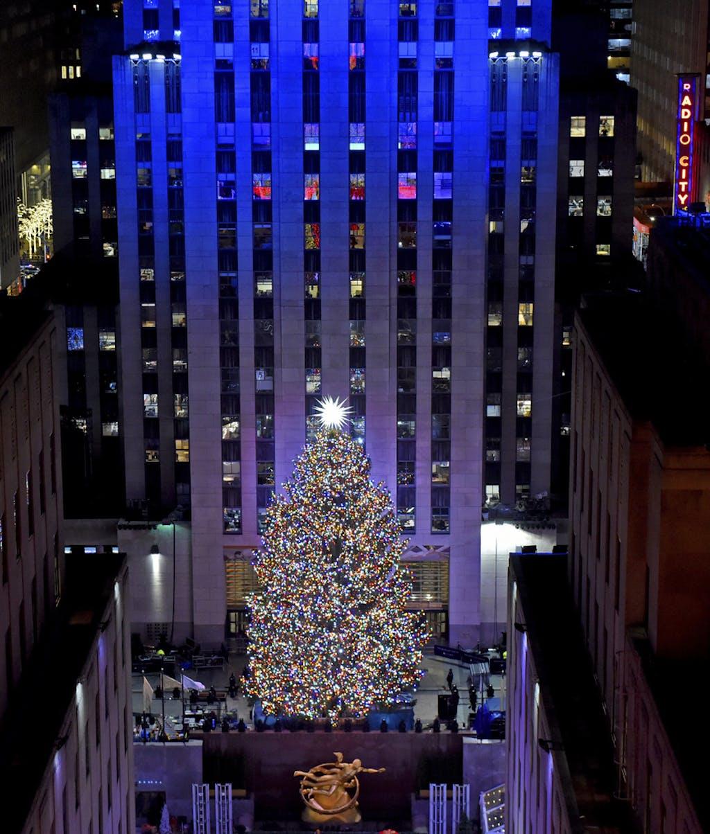 Immagini Di Natale Nel Mondo.Gli Alberi Di Natale Nel Mondo