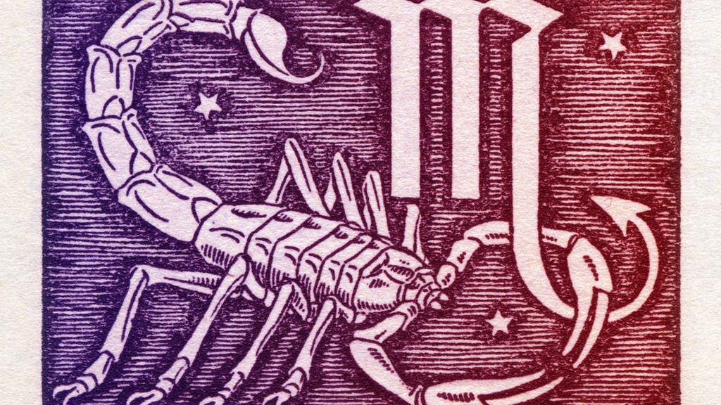Skorpion frau liebe 2019