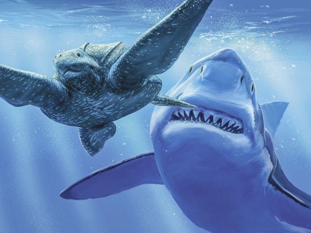 Urzeit Haie