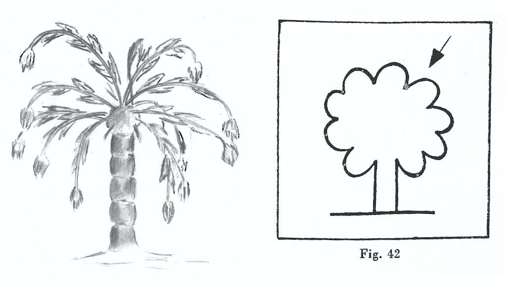 Zeichne einen Baum, und ich sage Dir, wer Du bist