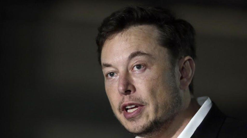 Elon Musk Bruder