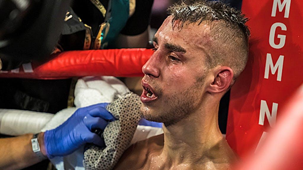 Boxer Verstorben