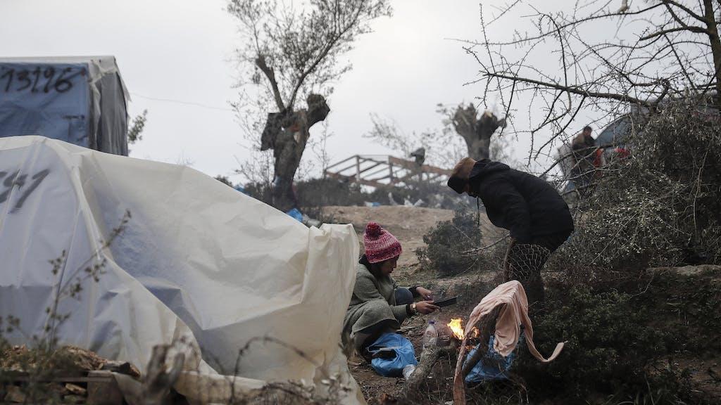 Grüne Flüchtlinge Aufnehmen