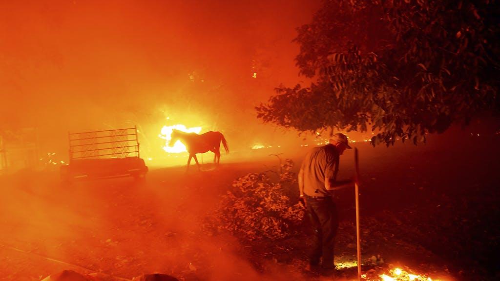 Usa Waldbrände