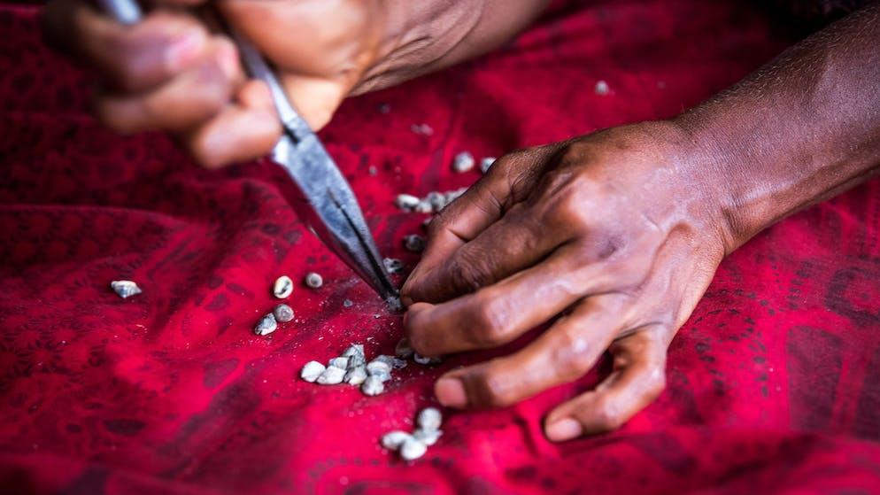 Der Wert vom Muschelgeld entsteht durch die filigrane Handarbeit. Die Schneckengehäuse werden nach minutiösen Suchaktionen gewaschen, dann poliert, gelocht und auf Naturfasern aufgefädelt.